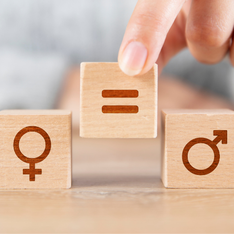 Index égalité Femmes- Hommes